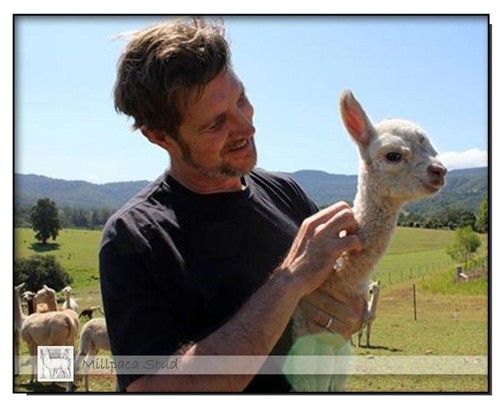 97.3 ABC Illawarra February 25th, 2014   Nick Rheinberger visited us down on the farm.