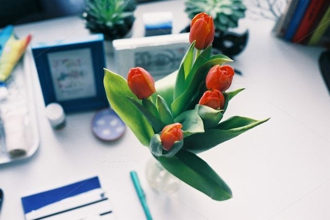 Tulips on a desk by Kasia Górska on @creativemarket #inspire #girly #stockphotography #office #working