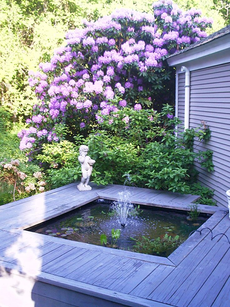 the backyard fountain at Opening Hill, Madison. At one point we had koi fish in the pool :) the rhododendron was amazing!