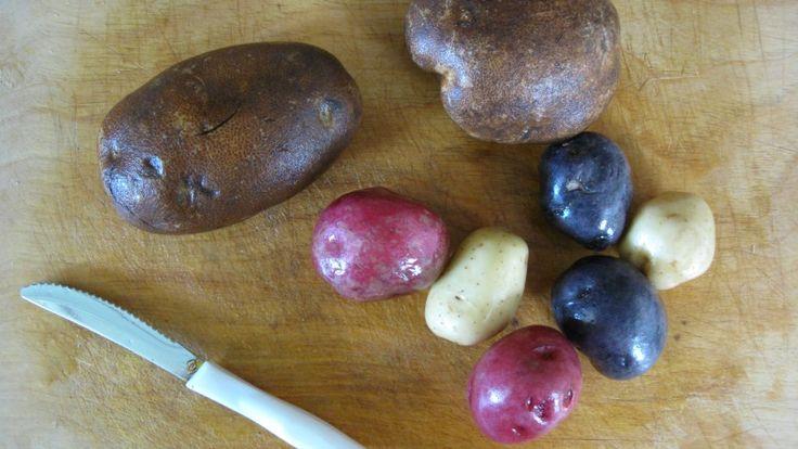 Rub Your Cutting Board With a Potato to Eliminate Garlic Odor