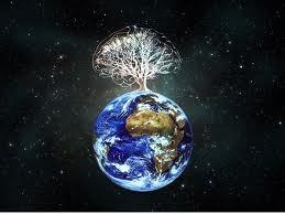 O universo pode crescer como um cérebro gigante, de acordo com uma nova simulação de computador. Os resultados, publicados em 16 de novembro nos Relatórios Científicos da revista Nature, sugerem que algumas leis fundamentais desconhecidas, podem governar o crescimento dos sistemas de grande e pequeno porte, desde a descarga elétrica entre as células cerebrais e o crescimento das redes sociais até à expansão das galáxias.