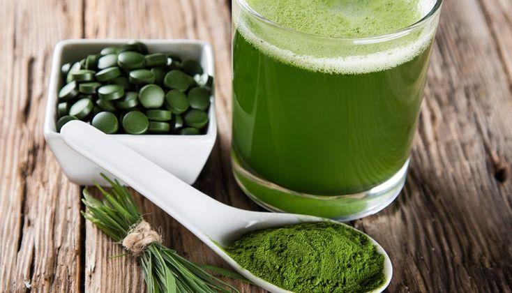 Spirulina, potente fuente de salud y nutrición | Cnut