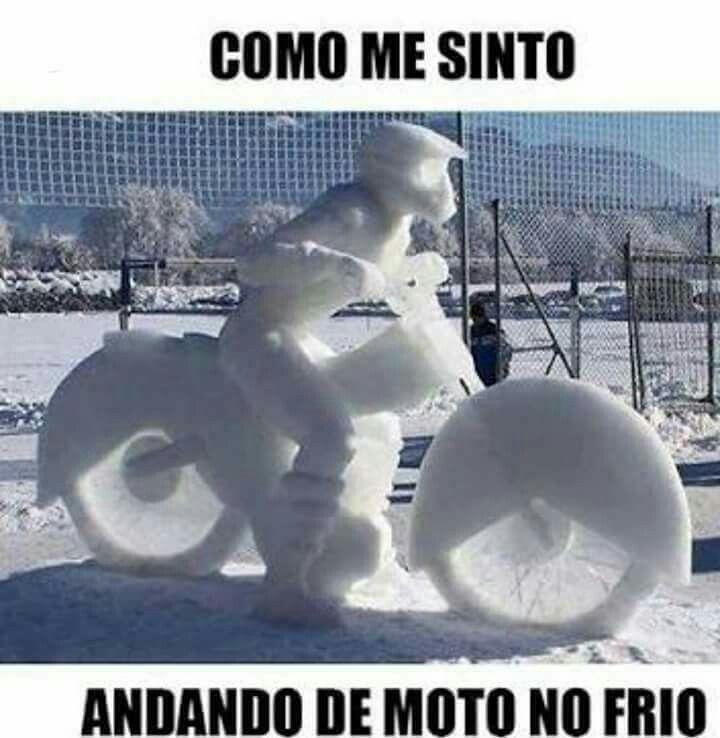 Pin De Gabriel Barbosa Em Humor Andando De Moto Motos Animais