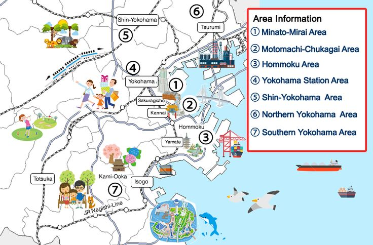 Things To Do - Yokohama Visitors' Guide