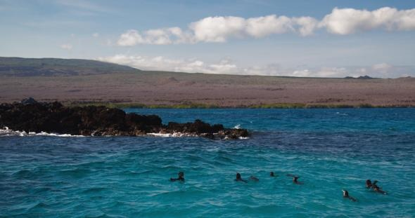 Galapagos Islands, Ecuador: Galapagos Islands So, Favorite Places, Ecuador Travel And Placs, Beautiful Places, Beautiful Far Away, Alot Travel And Placs, Nice Places, Ecuador Go, Art Galapagos