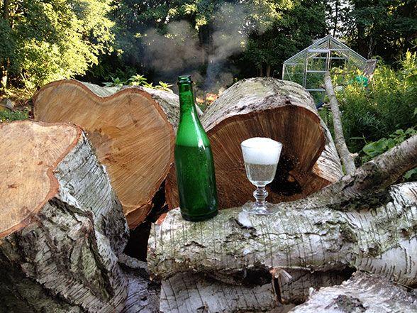 Skøn og forfriskende hyldeblomst champagne …