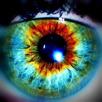 Central Heterochromia.  Example of central heterochromia which is when the iris displays more than one colour.  Generally with a sunflower or starburst  type pattern around the pupil