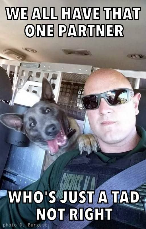 We wanted to share a photo of Santa Rosa County Sheriff's Office newest K-9 team, Deputy Burgett and K-9 Zurki. The look on his face is priceless...