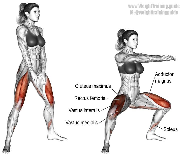 Bodyweight sumo squat. A compound exercise. Target muscles: Gluteus Maximus and Quadriceps (Rectus Femoris, Vastus Lateralis, Vastus Medialis, Vastus Intermedius). Synergistic muscles: Adductor Magnus and Soleus. Dynamic stabilizers (not highlighted): Hamstrings and Gastrocnemius.