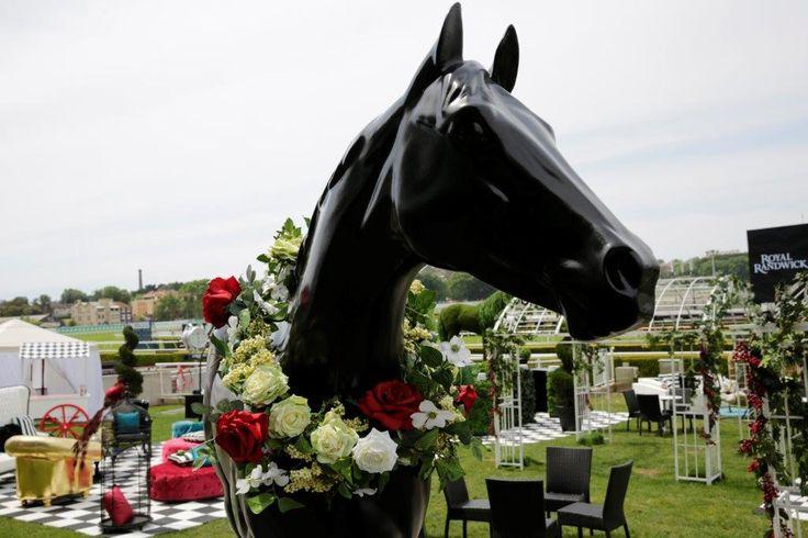 garland, horse, race day, flemington, randwick racecourse, rose garland, garden party