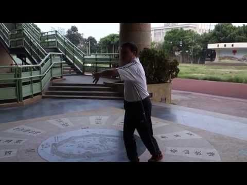 太極拳伏虎樁與降龍樁練法 - YouTube