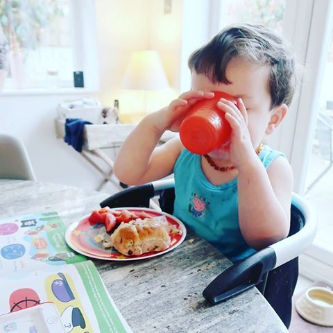 clamp on & snack on with the lobster portable high chair!   repost @thissurreymummy #kidsofinstagram #kidsofig #familygoals #pregnancy #babyfood #newmom #momtobe #motherhood #igmoms #babyledweaning #babysolids #familygoals #squadgoals #clickinmoms #childhoodunplugged #lifewithkids #motherhoodrising #style #clickinmoms #letthekids #babyneeds #babylife #babyfood #highchair