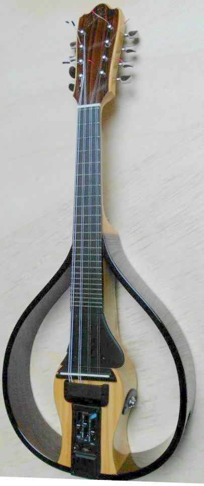 Gustavo Gomez electric Mandolin --- https://www.pinterest.com/lardyfatboy/
