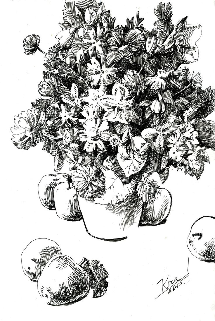 Flowers and Apples on Table. Graphic art. Pen on paper by culufin on Etsy