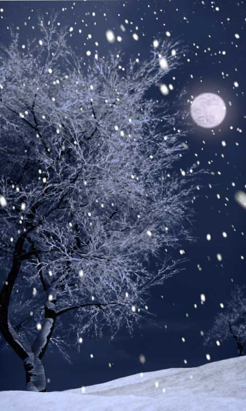 Full moonlight on a snowy nightscape.