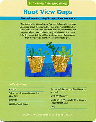 66 best images about kids in the garden on pinterest for Indoor gardening lesson