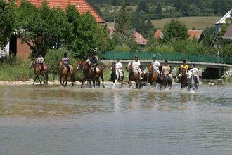My Haut-Doubs, passion Activités-Equestre