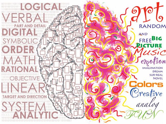 parts of the brain and their functions psychology - Google Search