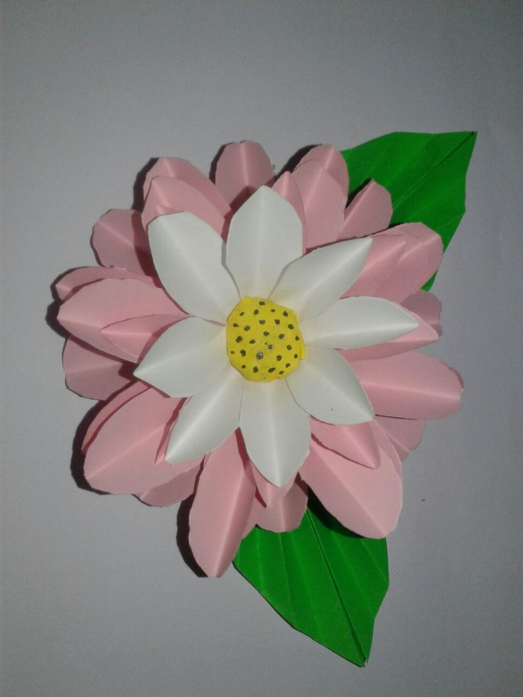 These flower is made with color papers.