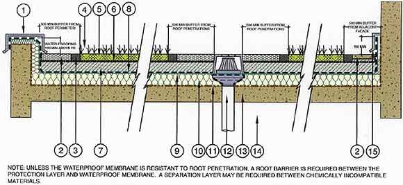 integrated bamboo catchment and filtration system
