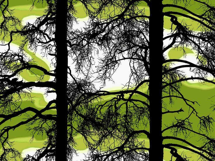 Kelohonka Lime Fabric - A stunning tree silhouette creating a subtle vertical stripe design with outspread spidery branches and an abstract dark lime background. Designed by Vallila Interiors of Helsinki and exclusive in NZ to Harvey Furnishings.