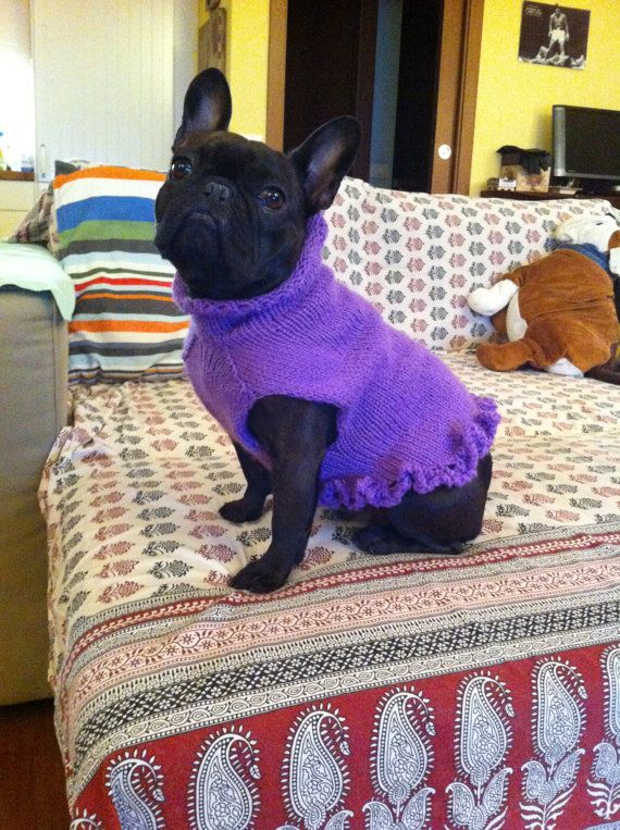 Knitting Patterns For Bulldog Sweaters : French Bulldog Knit Handmade Ruffled Dress-Sweater for Dogs /TRACKING CODE PR...