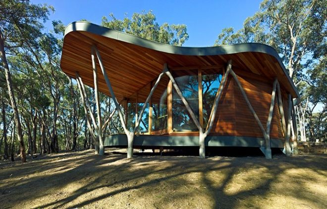 Trunk House, a Paradise in a Forest of Stringybark, Australia