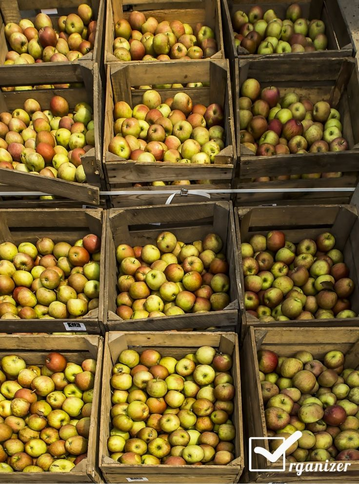 Jabłka fundacji Potrafię Pomóc