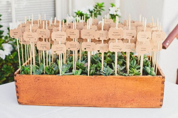 Cute idea to have escort cards in planters
