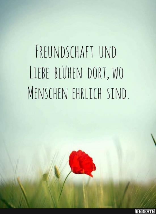 Freundschaft Und Liebe Bluhen Dort Wo Menschen Ehrlich Sind