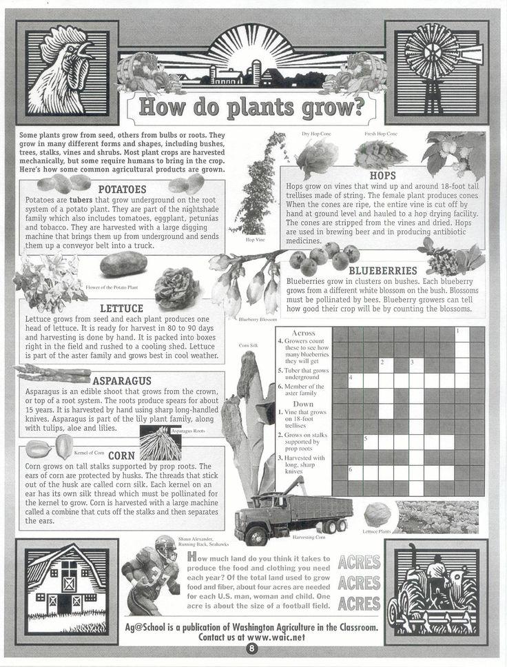 how do plants grow crossword school garden pinterest free printable asparagus and crossword. Black Bedroom Furniture Sets. Home Design Ideas