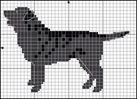Labrador Retriever (svart)