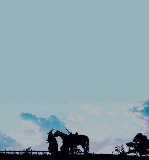 "kuailiang: ""Come along, Samwise. Keep up. """