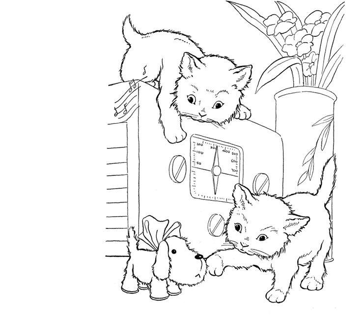 Cats Playing On A Oven Animal Coloring Pages Printable And Book To Print For Free Find More Online Kids Adults Of