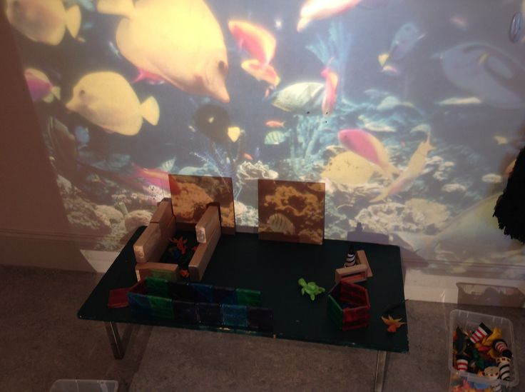 https://flic.kr/p/qUzbTe | Aquarium-OHP-with wooden boards propped on table