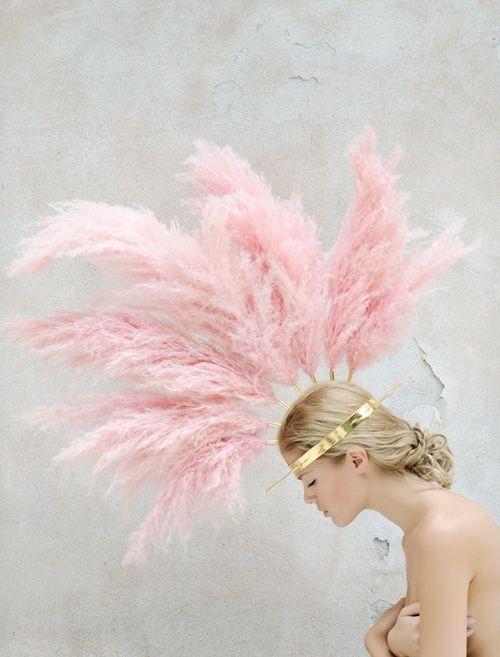 roze veren met een gouden kroon