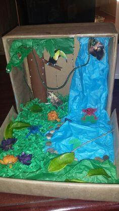 shoebox rainforest habitat - Google Search   Kool Kid Krafts ...
