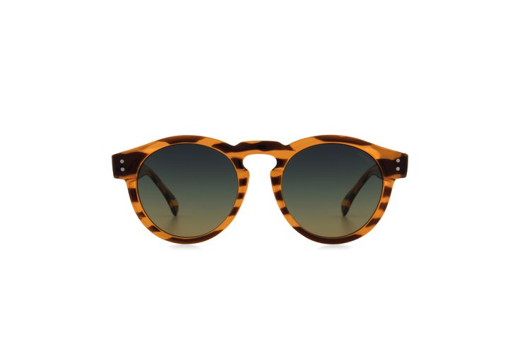 Clement Lined Tortoise