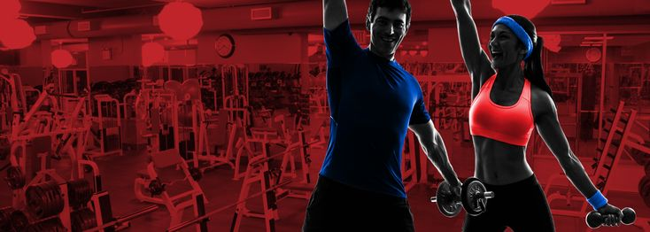 Synergy Fit Clubs is amongst the Famous Gym in NY providing cheapest gyms membership Ny. Our Gym is fully equipped with fitness facility and Training companies. To get moere information visit here : www.synergyfitclubs.com