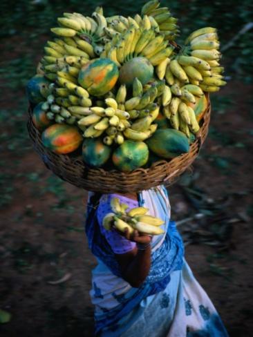 Local Woman Balancing Paw Paw and Bananas on Head at Market, Bangalore, Karnataka, India Photographic Print by Greg Elms at Art.com