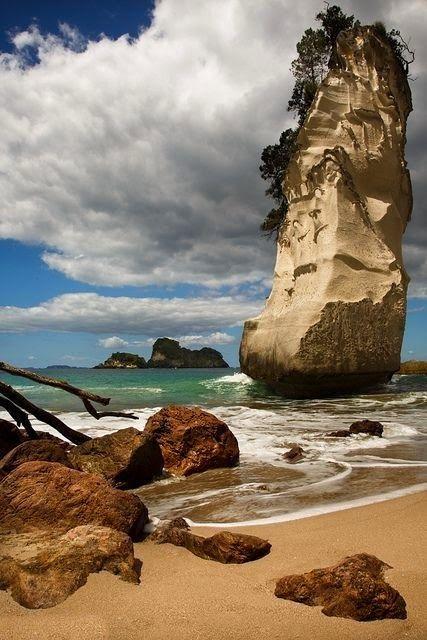 Coromandel Peninsul | 5 Best Places to Visit in New Zealand