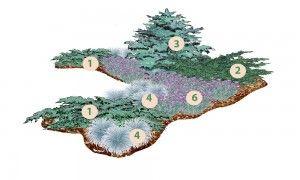 Растения: 1. Можжевельник чешуйчатый «Blue Сarpet» 2. Можжевельник виргинский «Grey Owl» 3. Ель колючая «Glauca Globosa» 4. Овсяница сизая 5. Гвоздика серовато-голубая