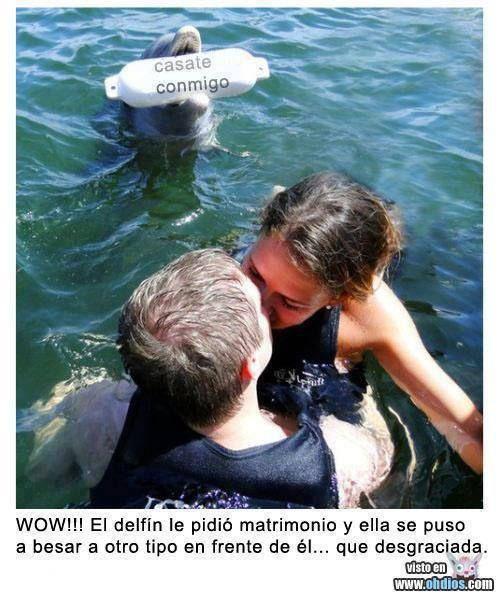 Great idea !!! Love it !!! ❤❤❤❤