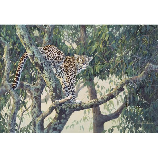 """Queen Of The Treetops"" limited edition by Lyn Ellison"