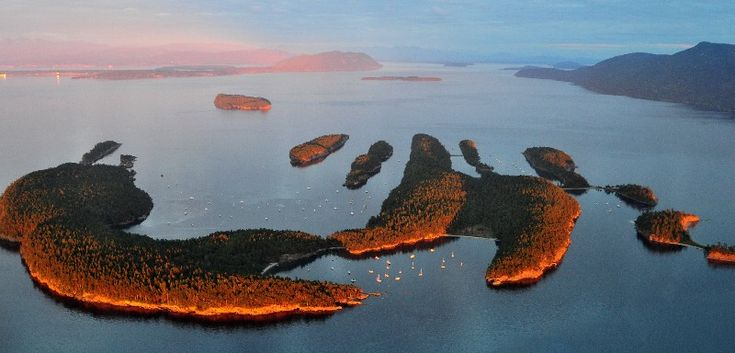 Sucia Island (in the San Juans): Juan Islands, Sucia Island, Dream Stops, Veins, Salt