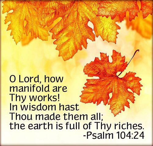 Psalm 104:24