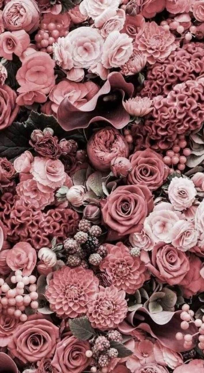 27 Very Pretty Iphone Xr Wallpapers That Will Jazz Your Phone Up Iphone Wallpaper Iphonexr Backg Flower Wallpaper Flower Aesthetic Flower Background Iphone