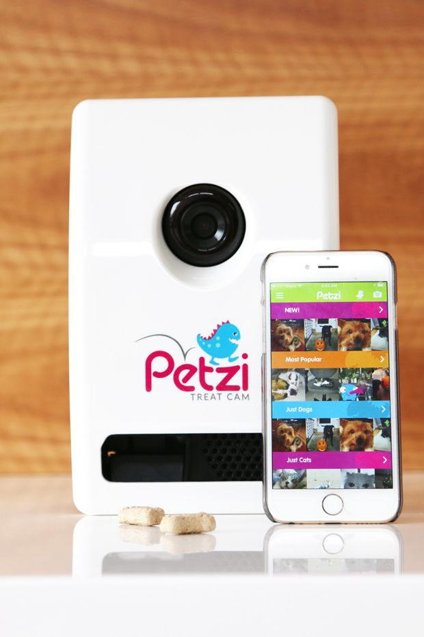 You Could WIN a $2K Pet Friendly Holiday and a Petzi Cam via @prettyfluffy