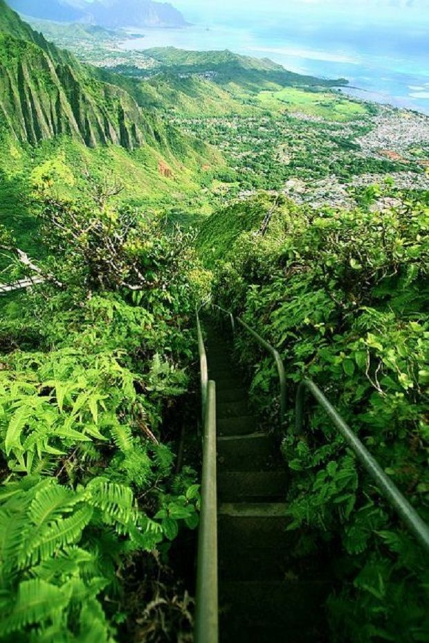 The Haiku stairs Oahu,Hawai