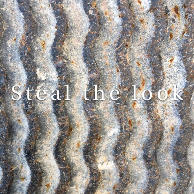 Steal the look – Snapshot